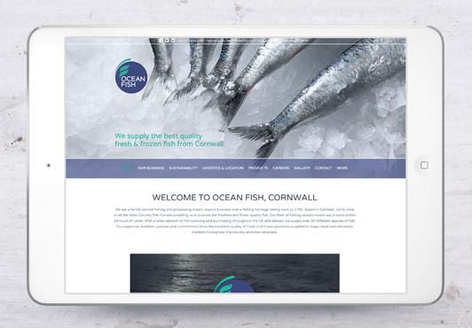 ocean-fish-webpage-02.jpg