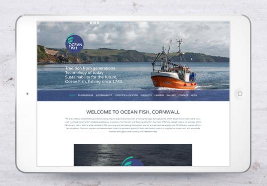 ocean-fish-webpage-04.jpg
