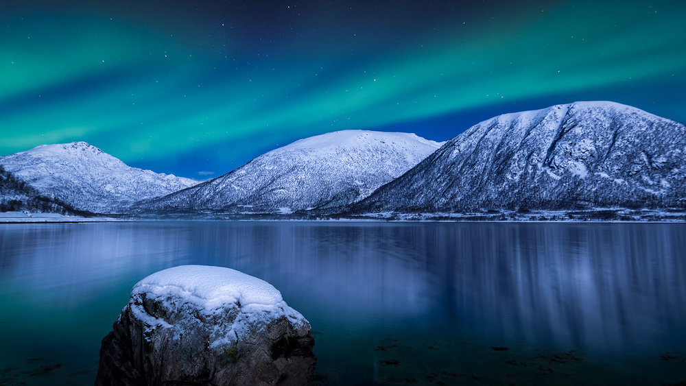 Gåsfjord