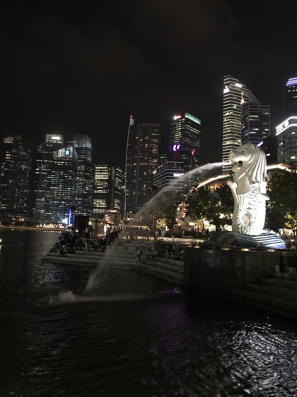 Merlion Park at Night