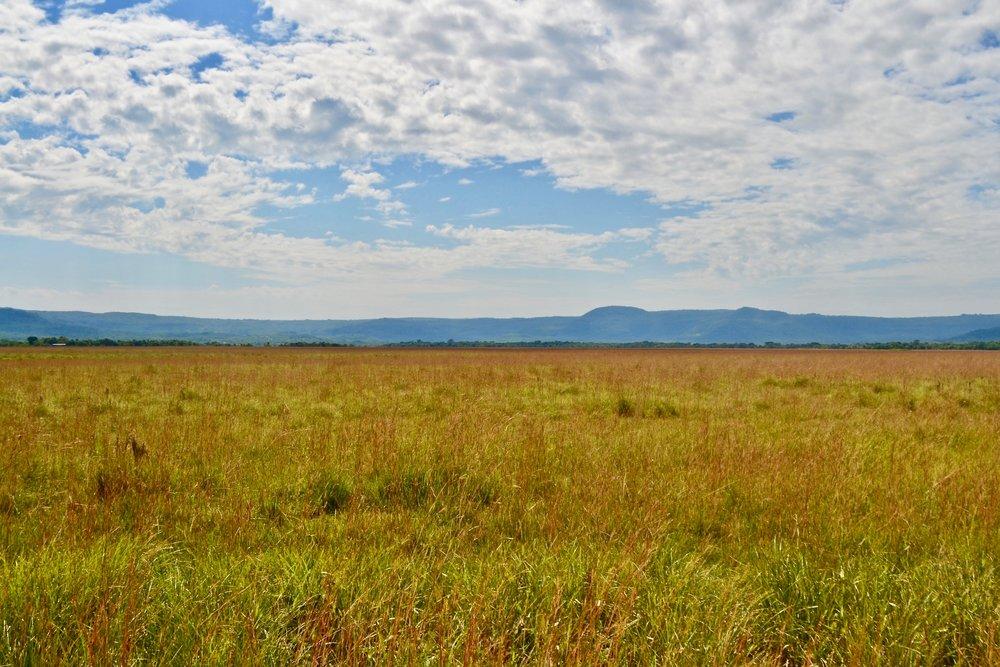 Rural Paraguay
