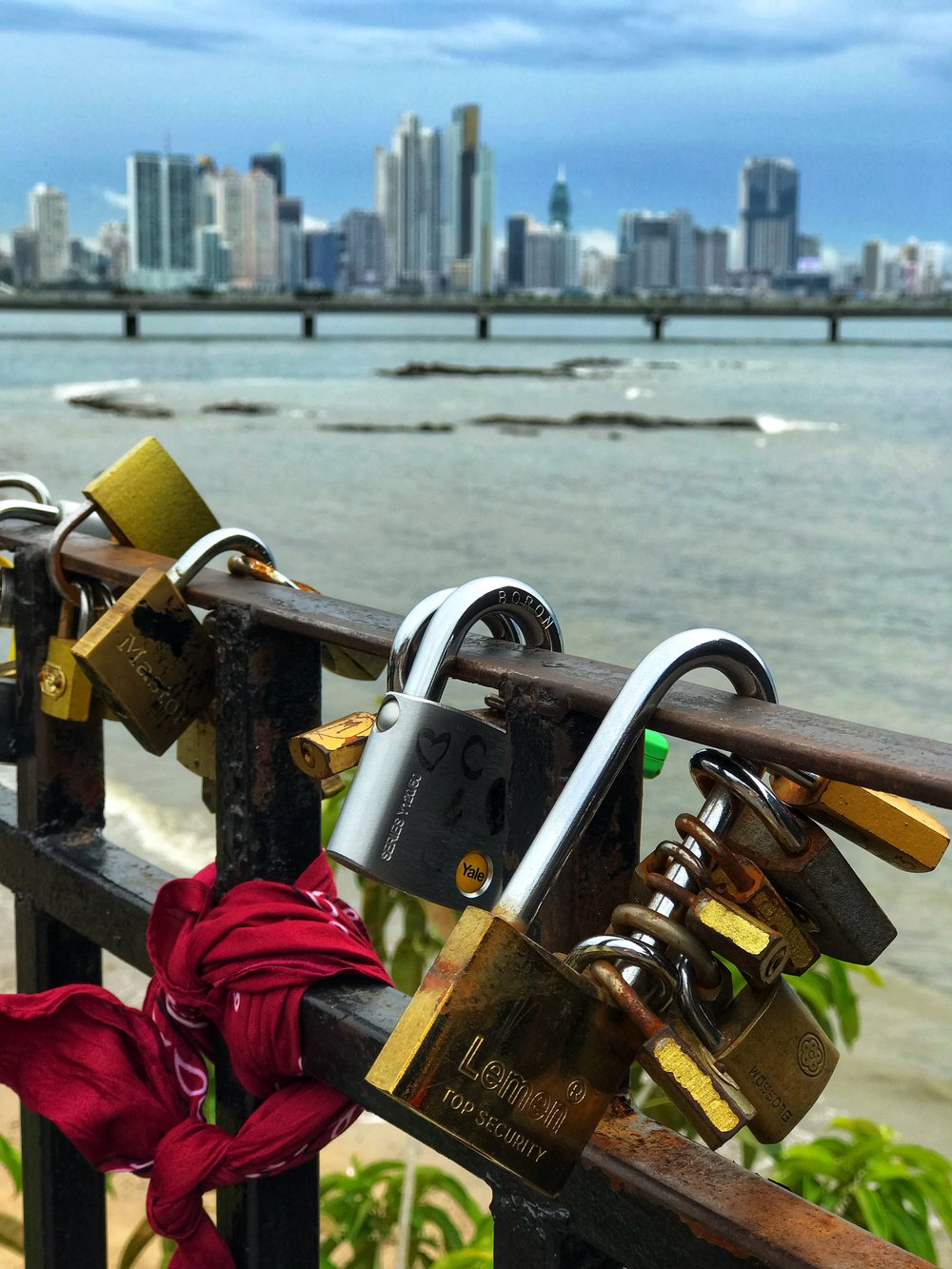 Locks of love with a view downtown