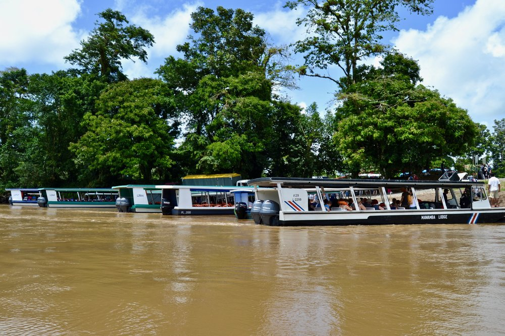 Boats that go to Tortuguero National Park