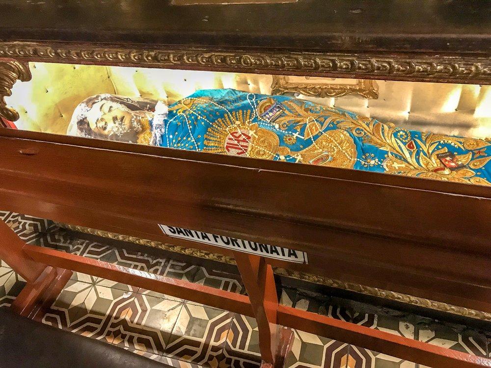 Santa Fortunata in la Iglesia de Merced.JPG
