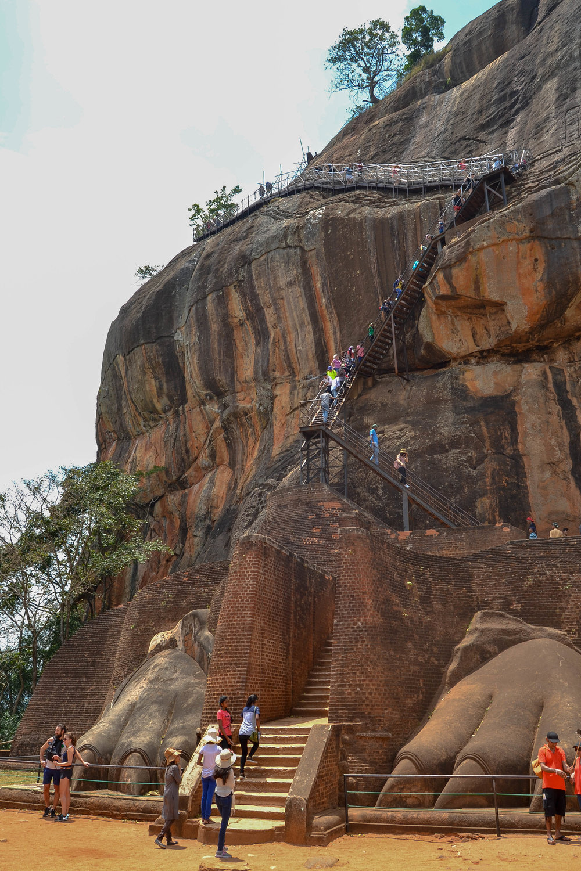 Sigiriya Lion's Paw
