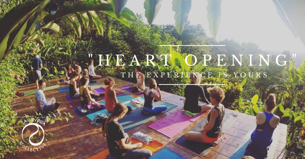 Heart Opening Yoga Teacher Training Costa Rica