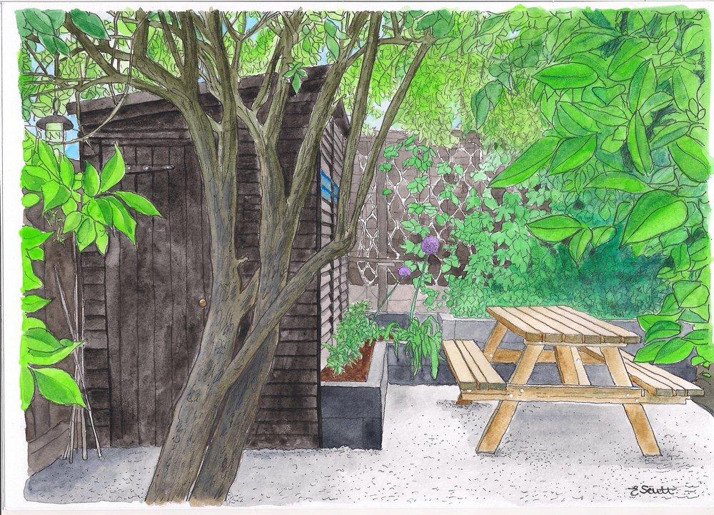 Jonathans Garden.jpg