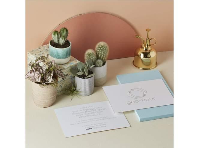 Green Fingers: Geo-Fleur Plant Post Club