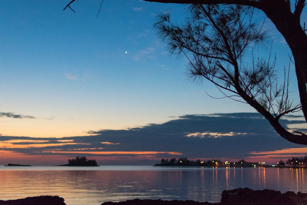 Eleuthera Tree Sunset.jpg