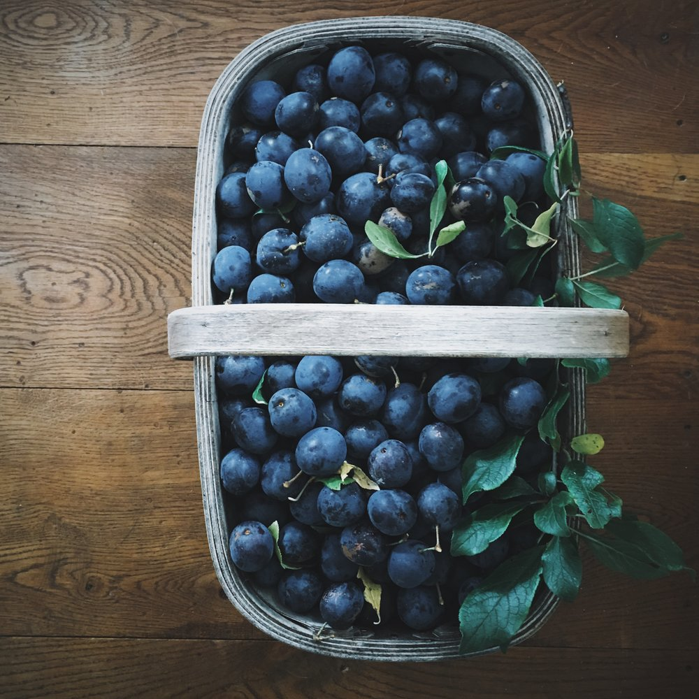 HOW TO MAKE DAMSON JAM