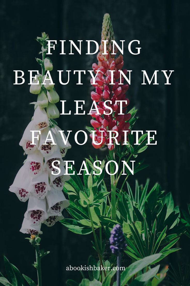 Finding beauty in my least favourite season