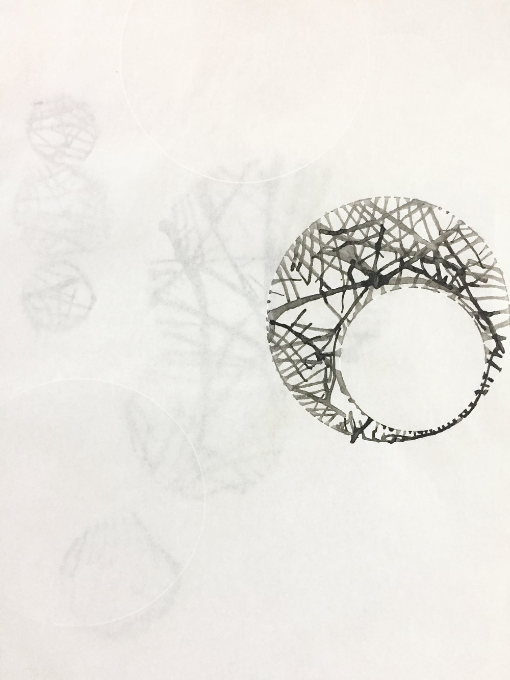 Circle Study 4