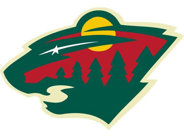 Best: The Minnesota Wild -