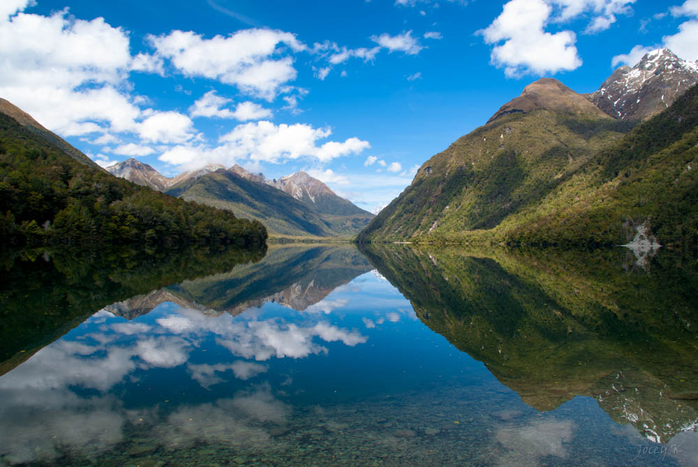 New+Zealand.jpg