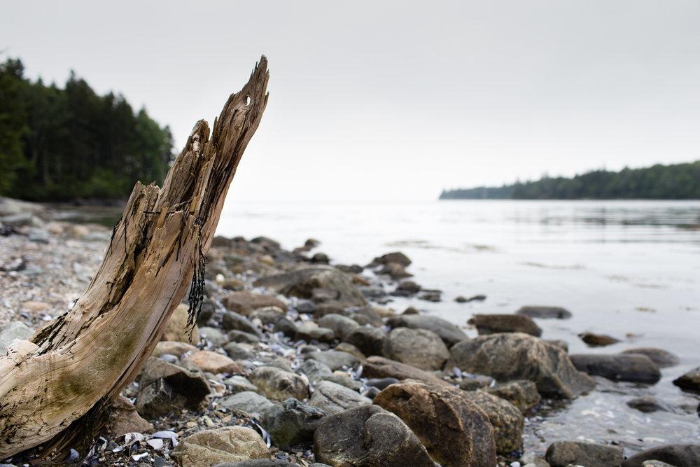 maine-landscape-photography-anna-mcclellan-photography-3007.jpg