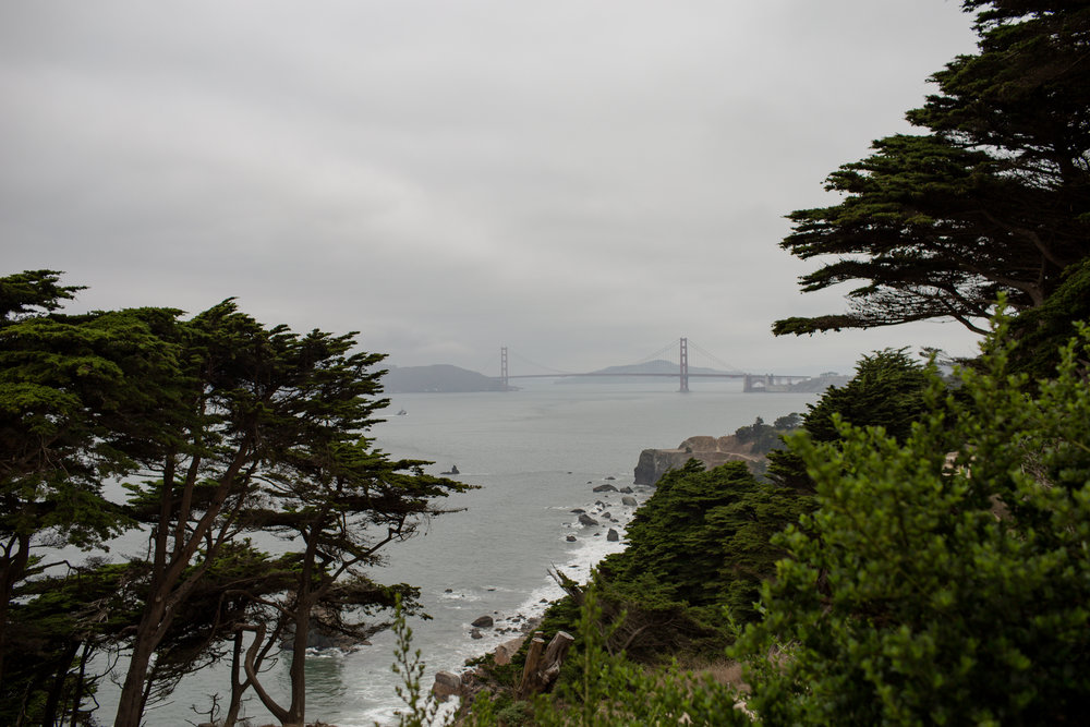 SF from Lands End