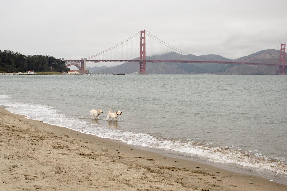 california-travel-photography-anna-mcclellan-photography-5658.jpg