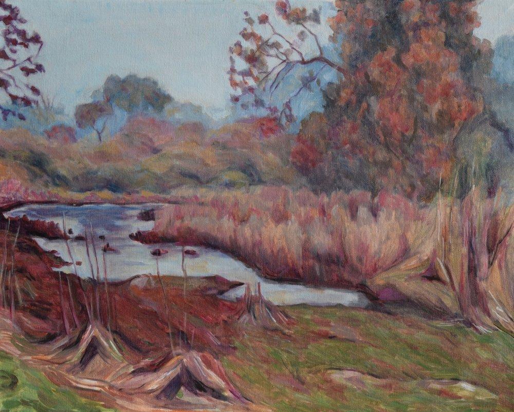 Swamp in Fall, Punjab