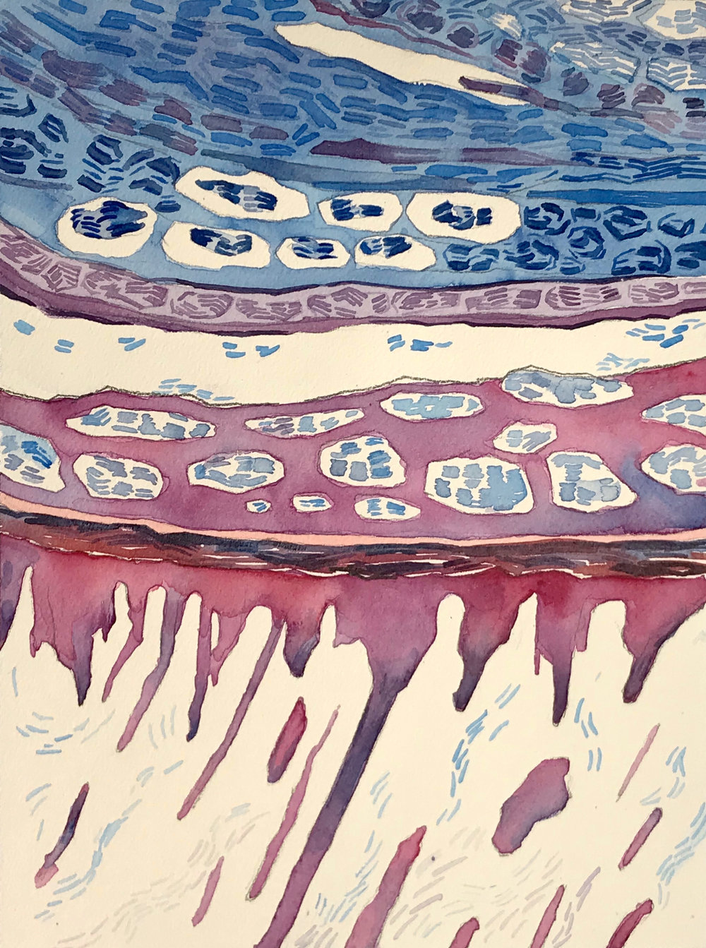 Epithelium 3, Watercolor, 12 X 9 inches