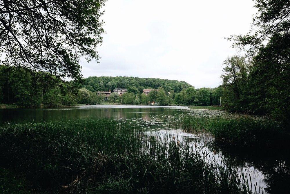 Buckow_Schlosspark.jpg