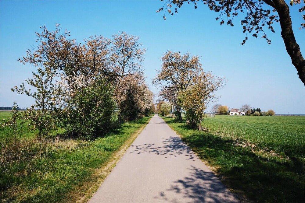 Annenwalde_Strecke.jpg