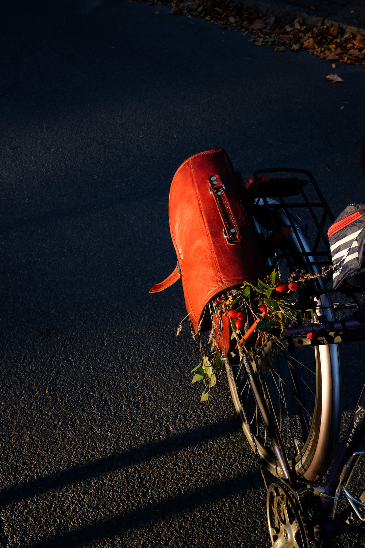 Ribbeck_Radtour_wecyclebrandenburg69.JPG