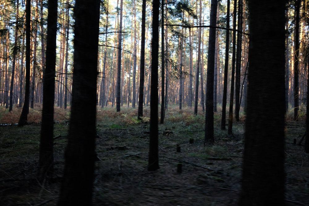 Beeskow__Sauen_wecyclebrandenburg43.JPG