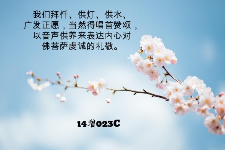 photo-1489537235181-fc05daed5805.jpg