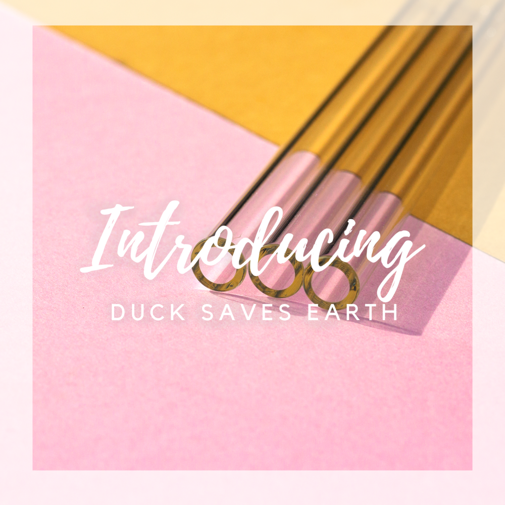 DuckSavesEarth1.png
