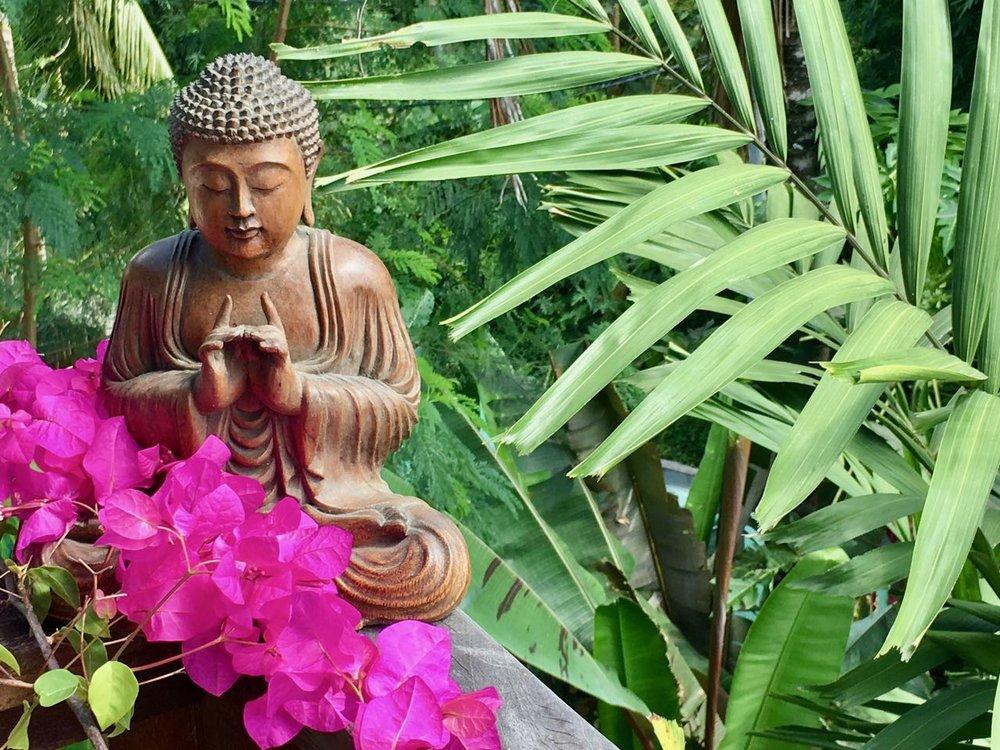 Yoga Nidra Sommerspezial -