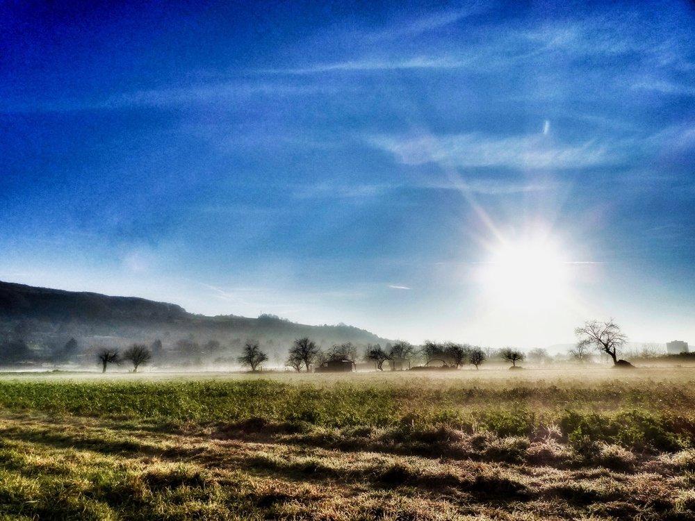 Sonne über der Wiese mit Nebel