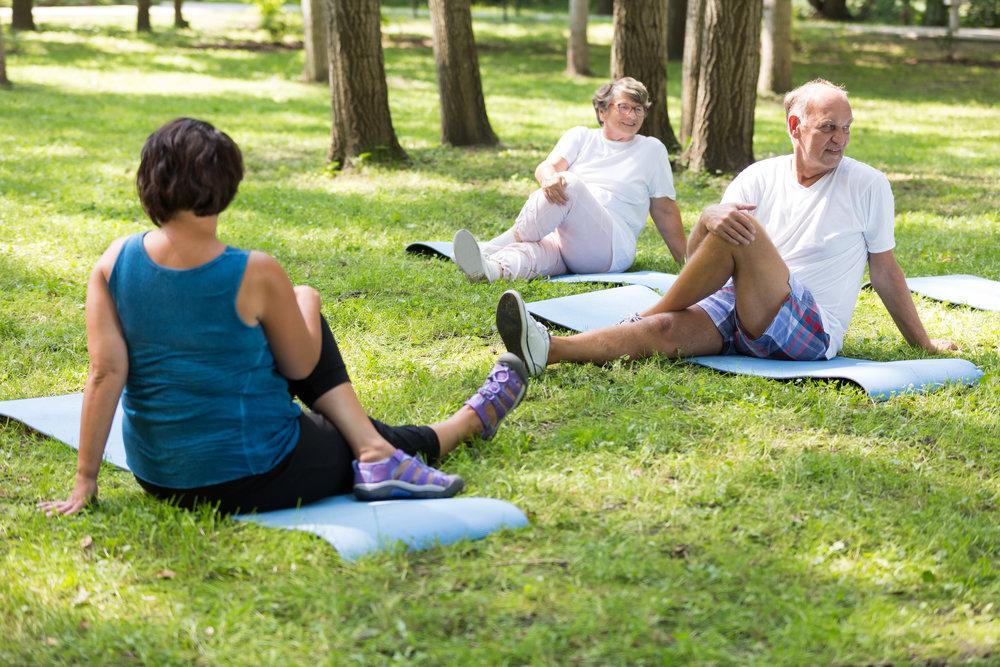 Fit Senior - Fitnesstraining für Senioren - Gerade im Alter ist es wichtig, sich regelmäßig zu bewegen und fit zu halten.Regelmäßiges Fitnesstraining für Senioren hilft, Übergewicht zu reduzieren oder zu vermeiden, Blutzucker, Blutfette und Bluthochdruck zu senken und den Stoffwechsel aktiv zu halten. Zudem werden Schlafstörungen gemindert und die gute Laune gesteigert. Auch das Training von Koordination und Gleichgewichtssinn ist möglich und sehr sinnvoll, z.B. zur Sturzprophylaxe.In unserem Kurs ermöglichen wir den Einstieg in ein Leben mit mehr Bewegung ohne sich dabei zu überfordern. Die körperliche Leistungsfähigkeit wird durch die sportlichen Aktivitäten gestärkt und hilft den Alltag besser zu bewältigen.Jetzt kostenloses Probetraining buchen