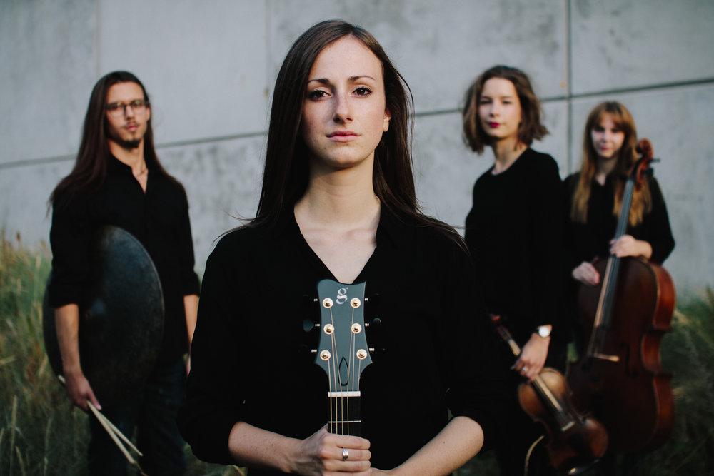 Van Hoek quartet.jpg