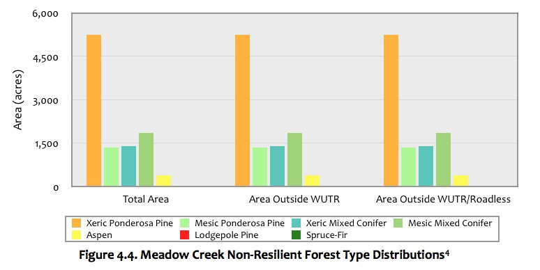 Figure 4.4 Meadow Creek Forest.jpg