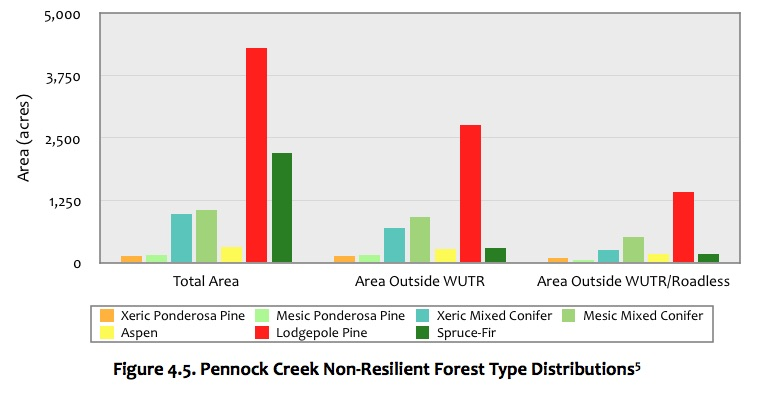 Figure 4.5 Pennock Creek Forest.jpg