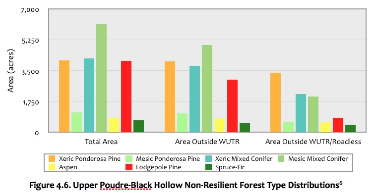 Figure 4.6 Upper Poudre-Black Hollow Forest.jpg