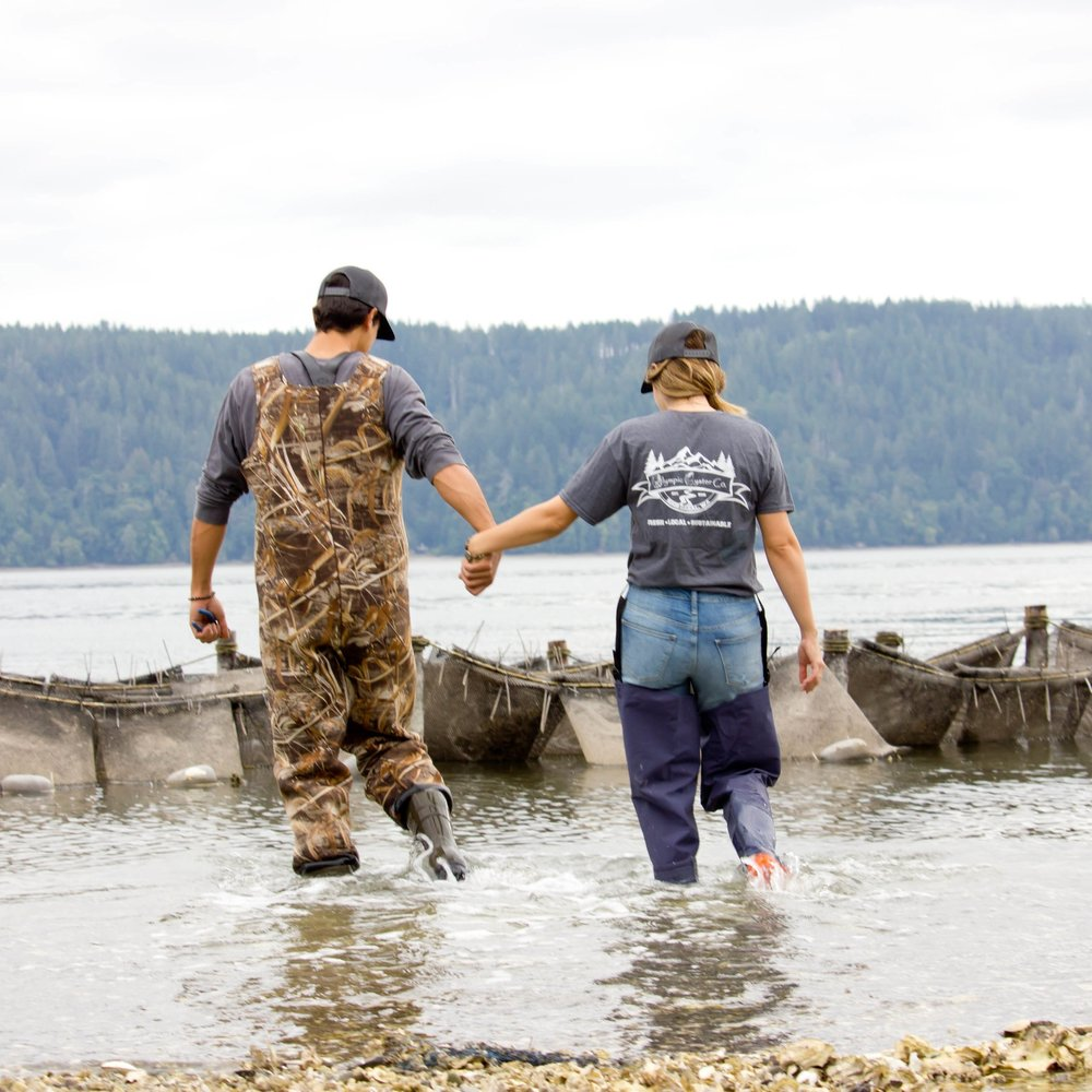 """Olympic Oyster Co. - We are very proud to be a part of the long history of oyster farming in our state and are overjoyed to be able to share our little slice of paradise ."""""""""""