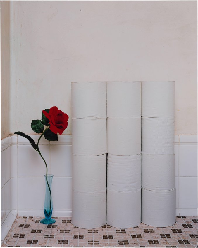 Takashi Yasumura ,  Rolls of Toilet Paper and a Plastic Flower, from the series Domestic Scandals , 1998