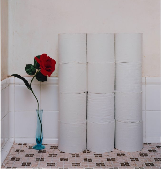Running Out of Toilet Paper - We're claiming that the comfort of our backside is greater than the life of a tree, or rather, millions of trees.