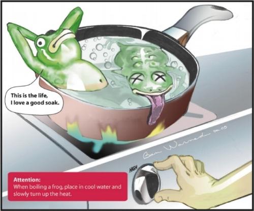 boil-the-frog.jpg