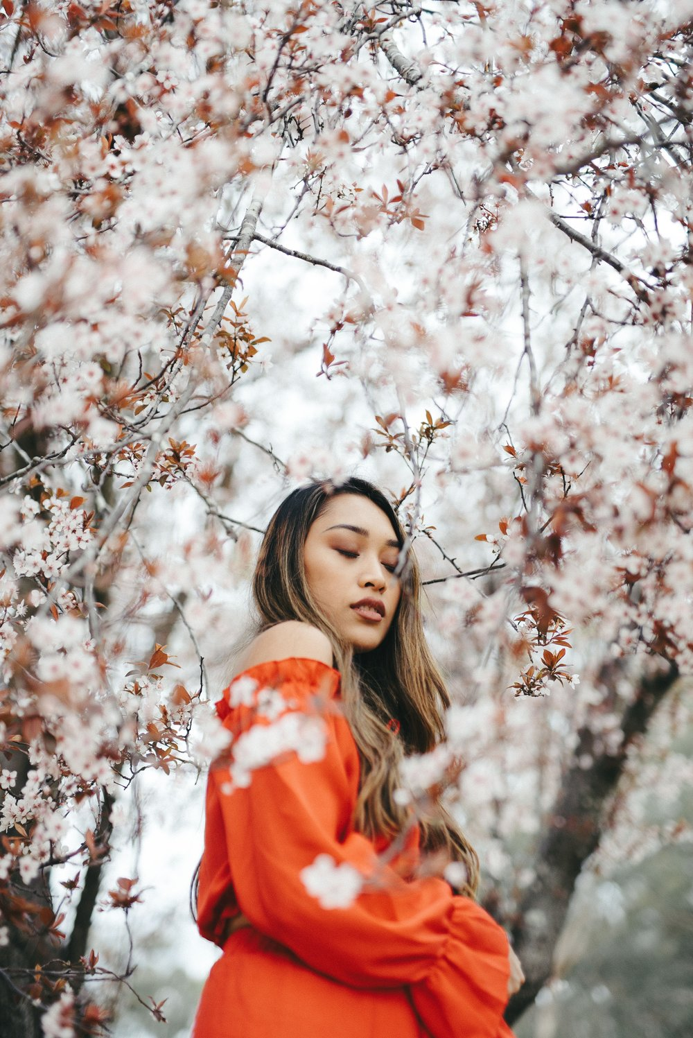 A woman stands in the midst of a full blooming almond tree