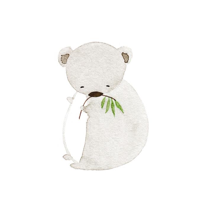 Koala by illustrator Amy Oreo | Quirky and whimsical freelance illustration