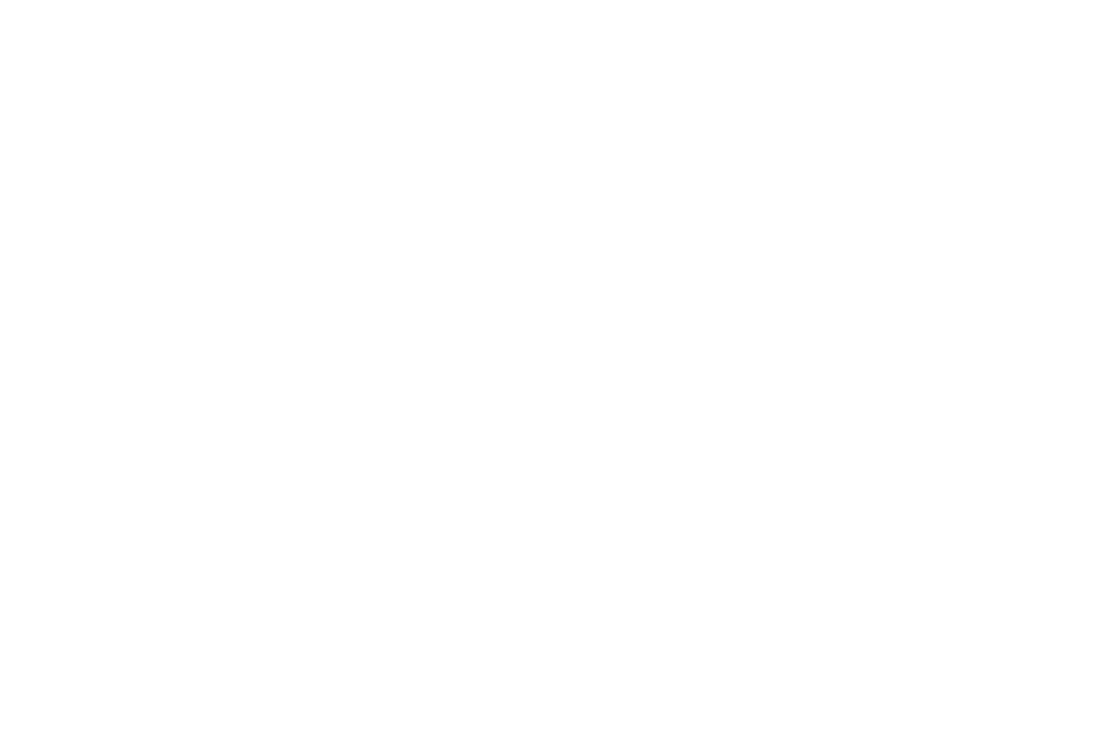 Richard Harris International Film Festival, Limerick October 29th 2017