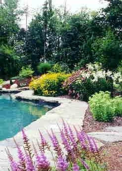 Poolside Landscape AFTER