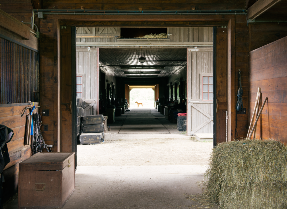 Calypso_Barn_Stables-view.jpg