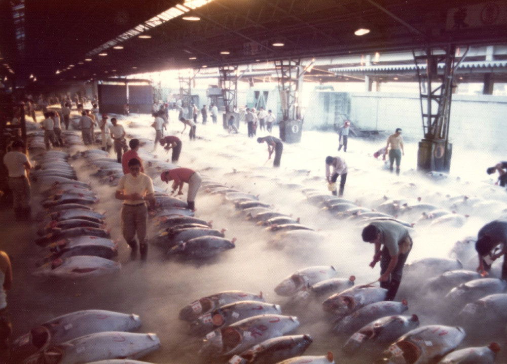 Tokyo_Fish_Market_in_the_1960s___Flickr_-_Photo_Sharing_.jpg