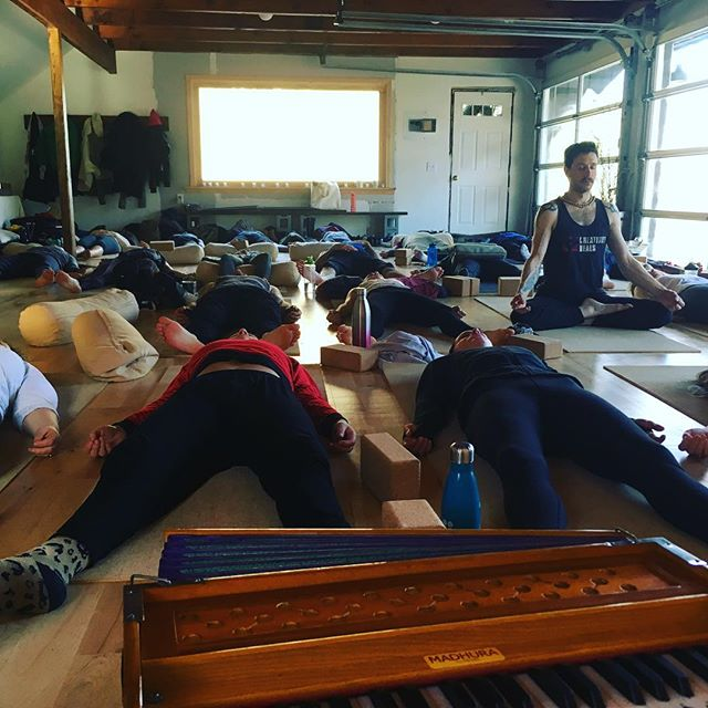 Ecstatic weekend hosting @palosantowellnessboutique YTT with @danielcorduayoga and friends ! 🌲🦆🌲🦆🐑🌳🦆🦊