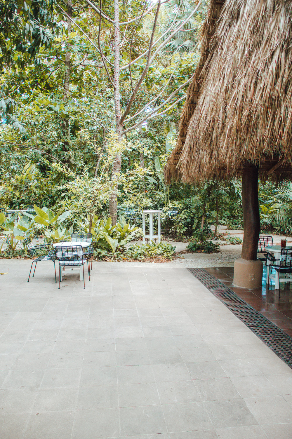 Nosara-Costa-Rica-Escape-travel-guide-what-to-do-where-to-stay