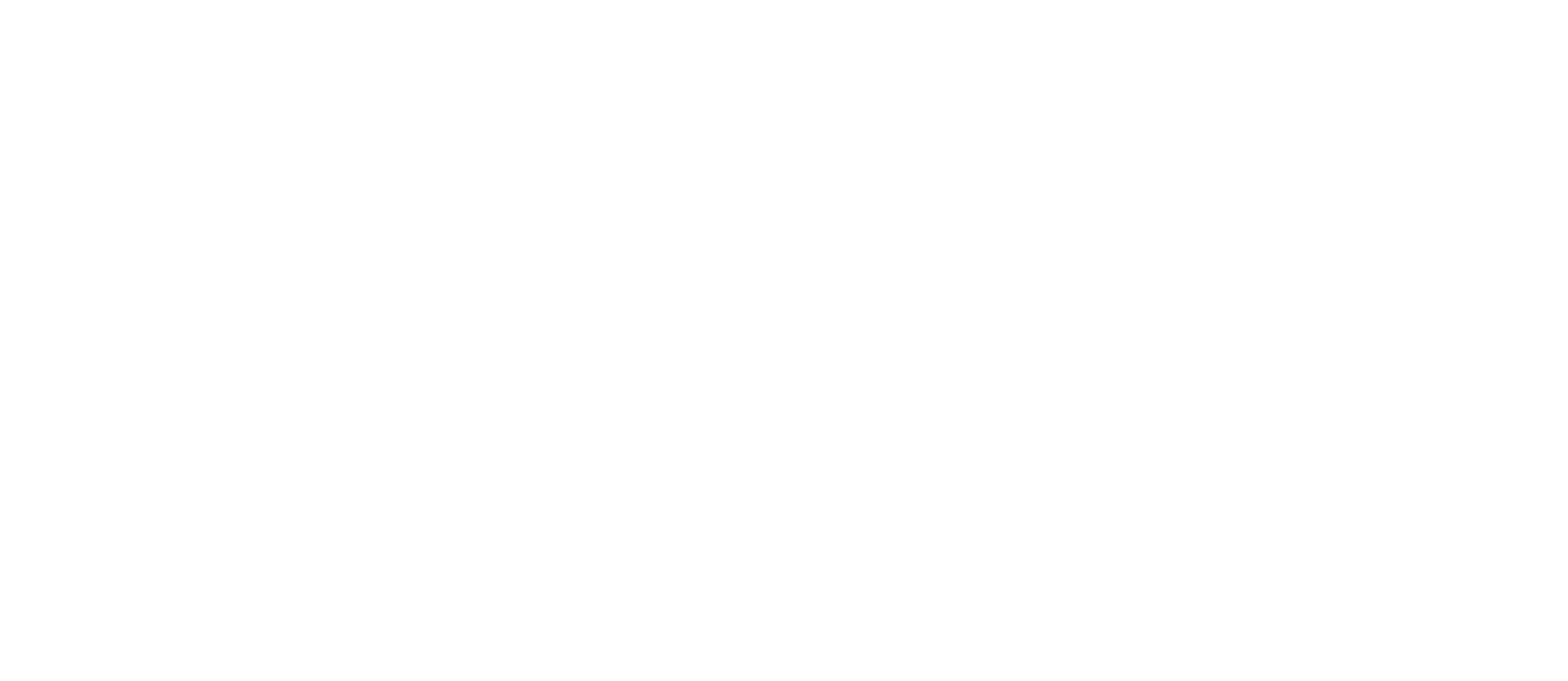 BLUSH BROW BAR