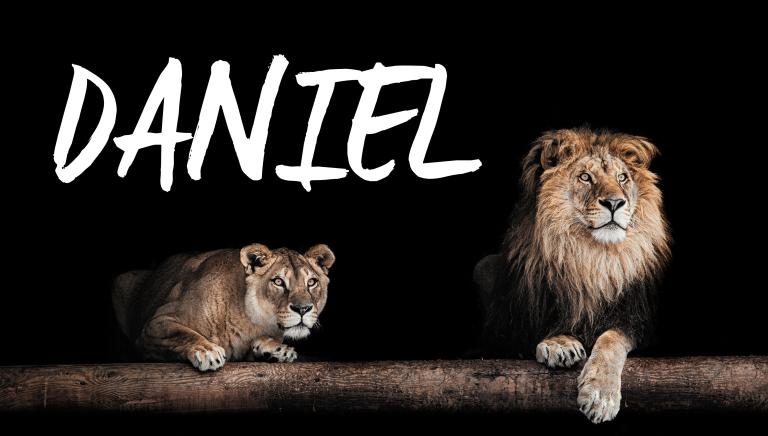 daniel-768x436.jpg
